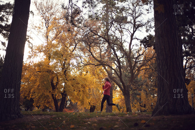 Woman jogging on park path in fall