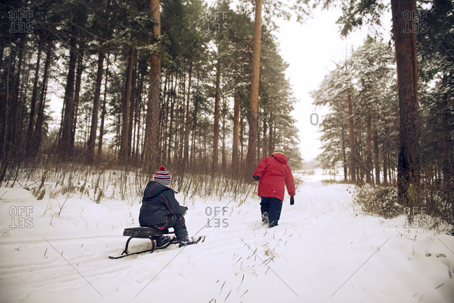 Child being pulled through woods on ski-sled