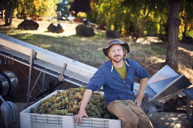 Portrait of winemaker with his harvest of wine grapes and machinery