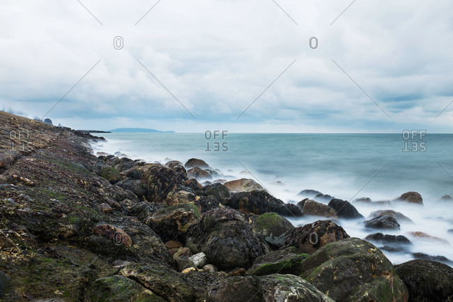 Coastal view of rocks covered in kelp