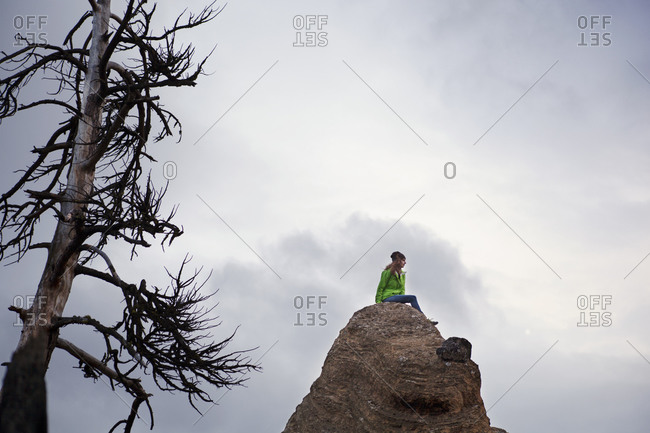 Woman sitting at the peak of a tall rock with a dead tree in the foreground
