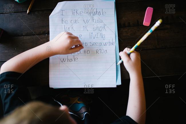 Boy doing his school homework