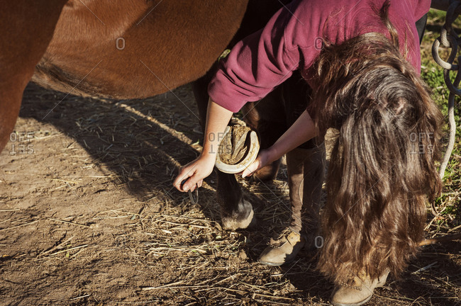 Woman taking care of horse's horseshoe