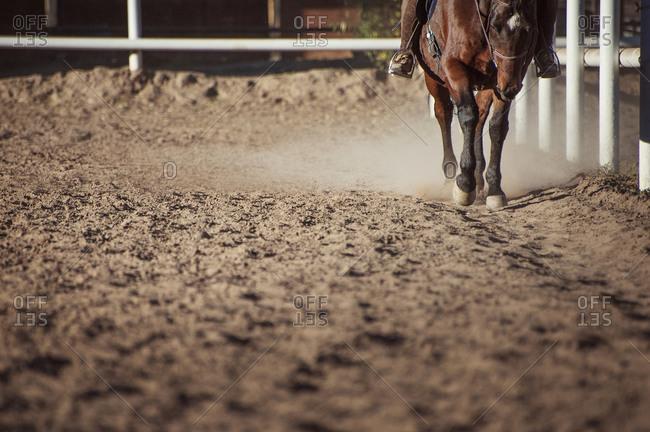 Woman riding horse around pen