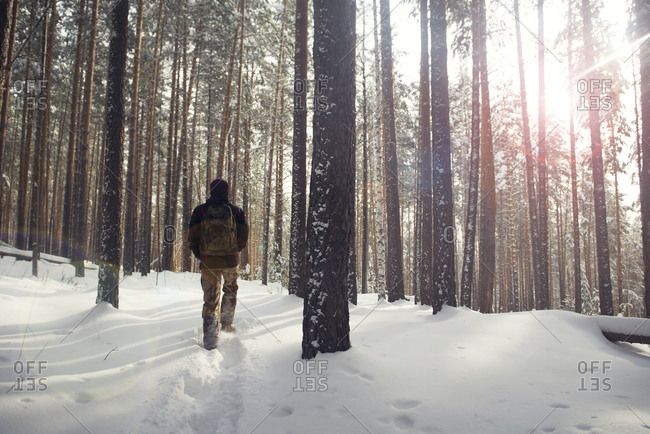 Lone hiker with backpack in snowy woods