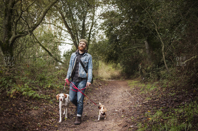 Rugged young man walking dogs in woods