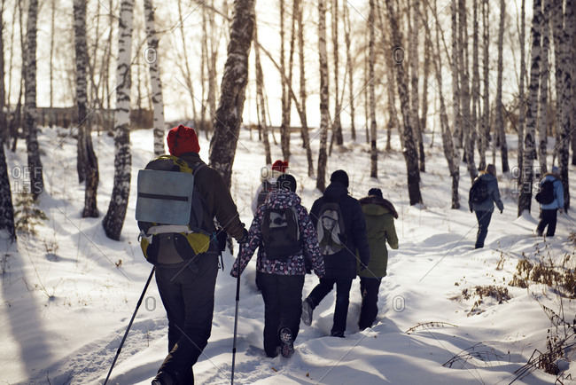 Group of hikers heading through snowy forest