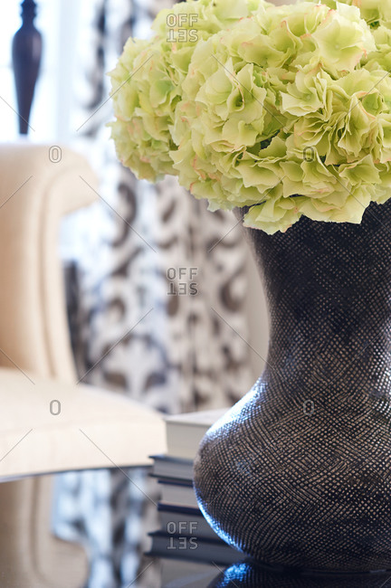 Pale green hydrangea blooms in a black and white textured vase