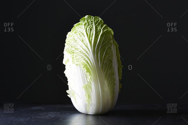 Head of napa cabbage upright