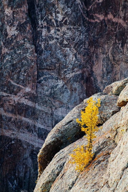 The Painted Wall in Black Canyon of the Gunnison National Park, Colorado