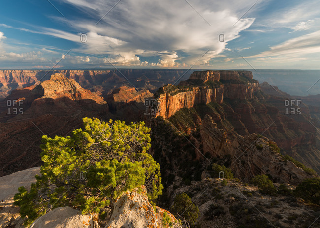 View towards Wotans Throne from Cape Royal on the North Rim of Grand Canyon National Park in Arizona