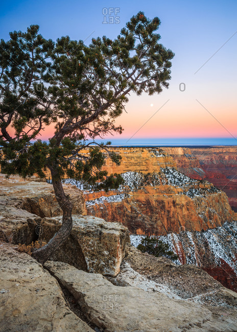The moon descends in the morning sky above the Grand Canyon