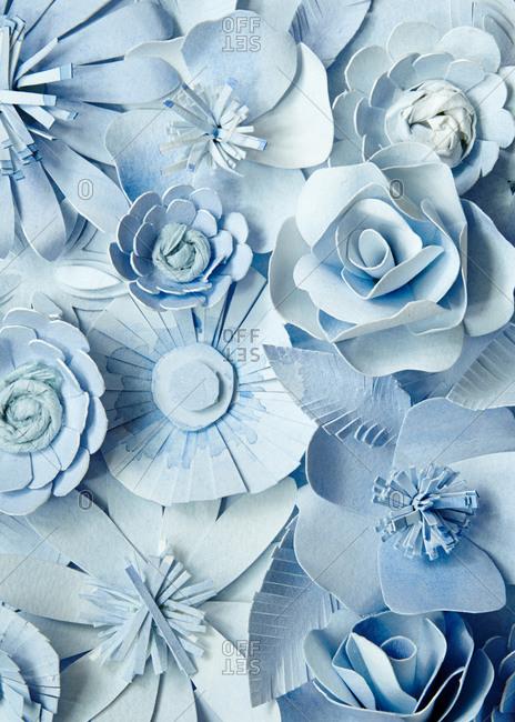 Studio shot of blue paper flowers