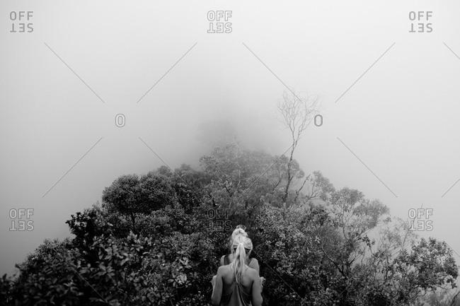 Tourists hiking in a foggy forest on Oahhu Island, Hawaii
