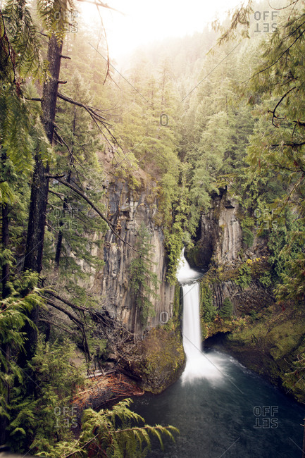 Waterfall in wooded mountain setting