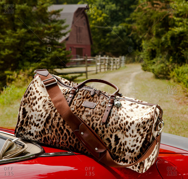 Weekend duffel bag on the back of a sports car