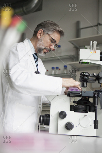 Scientist in laboratory working at microscope