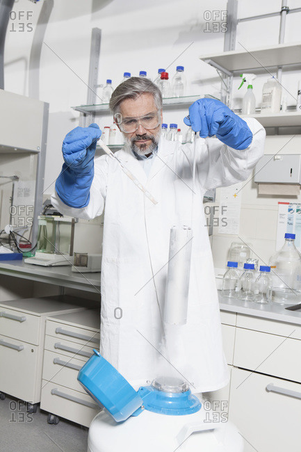 Scientist looking at lab samples in nitrogen
