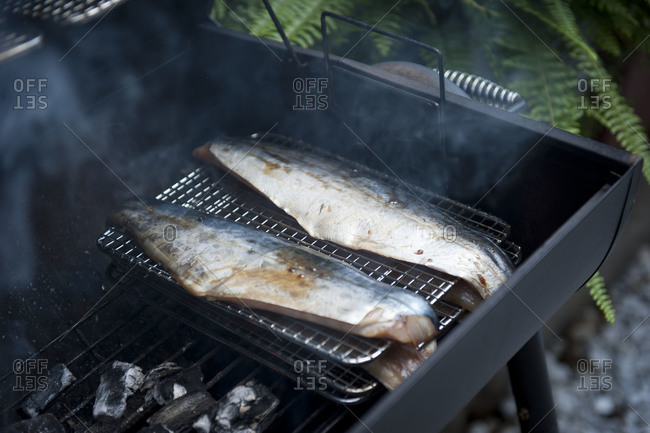 Fish smoking on an outside grill