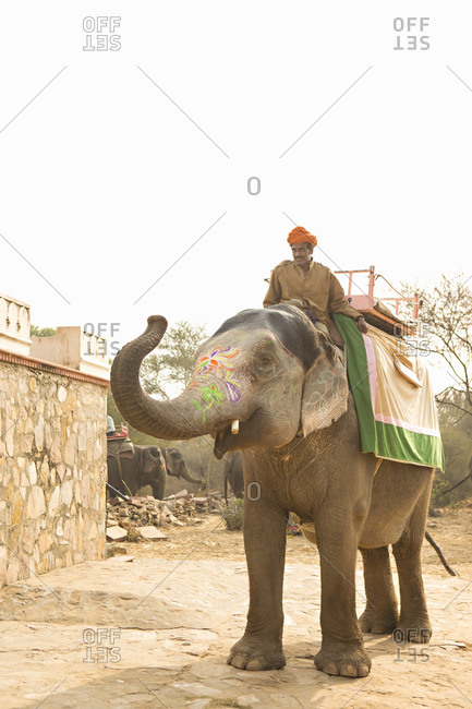 January 12, 2014: Elephant and guide in India