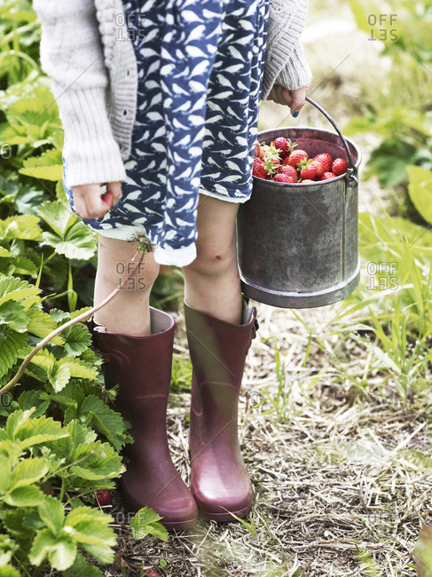 Girl with strawberries in buckets