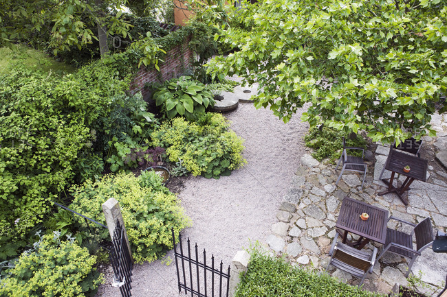 High angle view of garden