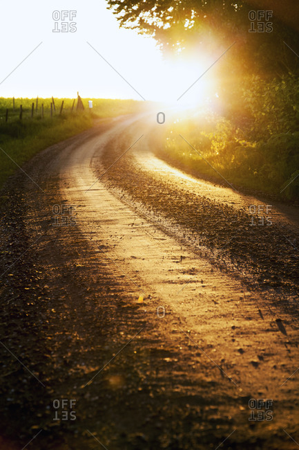 Sun shining on a dirt road