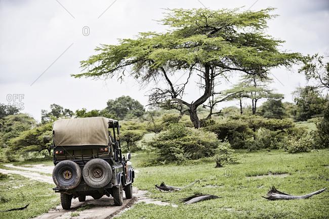 Vehicle on safari the African savannah