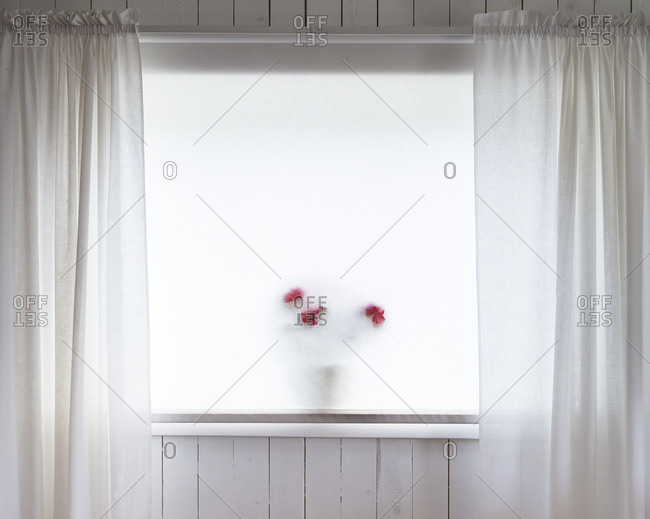 White curtains and mat-glass window