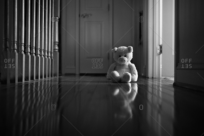 A stuffed animal alone in a hallway