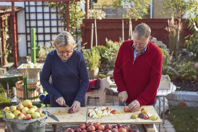 Senior couple cutting fresh apples