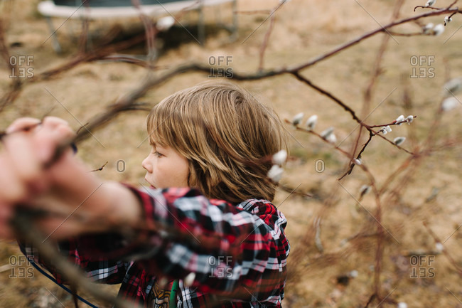 Young boy grasping a tree