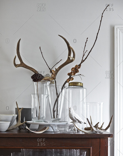 Antlers and glass jars displayed on a cabinet