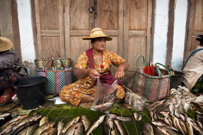 Nyaung Shwe, Myanmar - August 19, 2011: Fishmonger selling fish at Nyaung Shwe Market, Myanmar