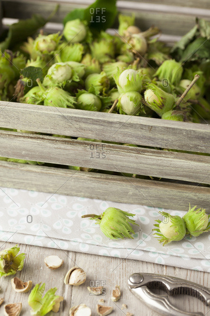 Homegrown hazelnuts in a wooden box