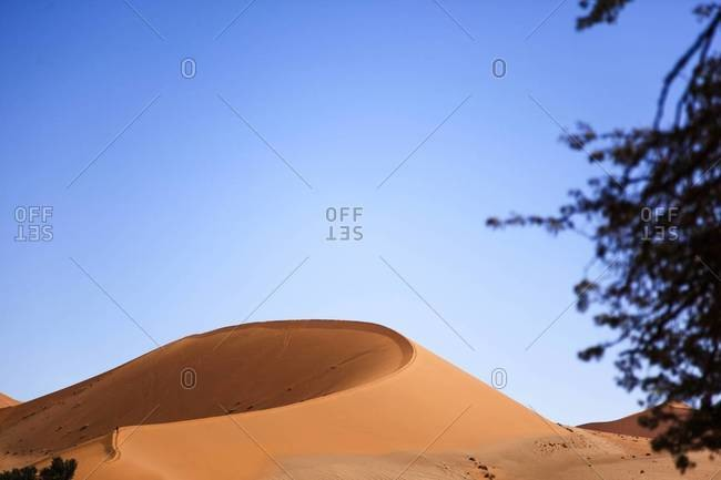 A curved sand dunes in Sossusvlei, Namibia