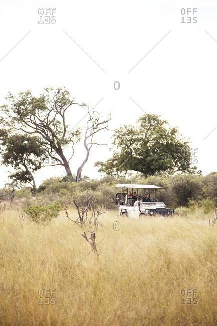 On safari at Vumbura Plains, Botswana