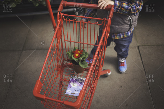 Boy standing with cart in flower nursery