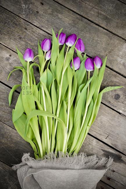 Tulips on dark wood, jute