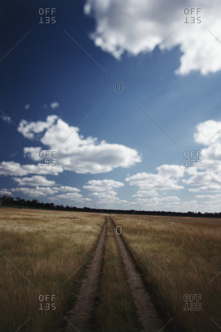 Rural road near Linkwasha Airstrip in Zimbabwe, Africa
