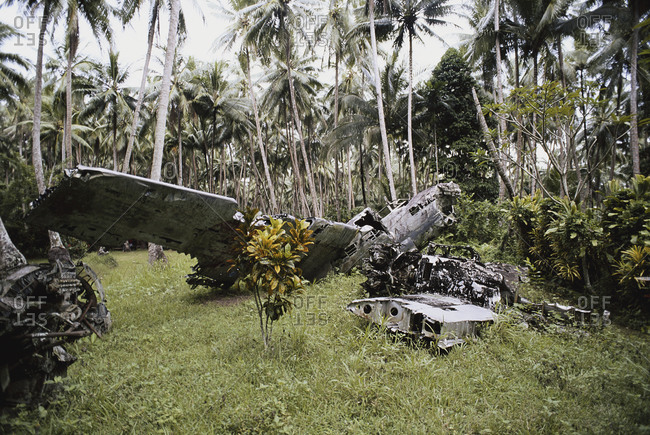 Wreck of a Japanese bomber in a rainforest, Papua New Guinea