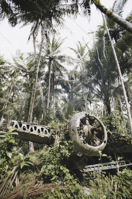 Remains of a Japanese bomber in a rainforest, Papua New Guinea