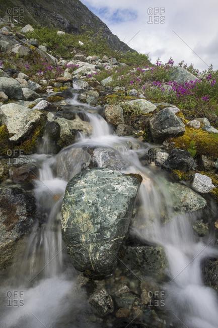 Small stream cascading down in Glacier Bay National Park, Alaska