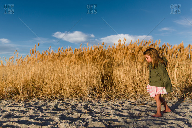 A little girl wanders through a sand dune