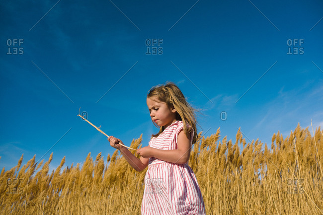 A little girl holds a stick found on sand dunes