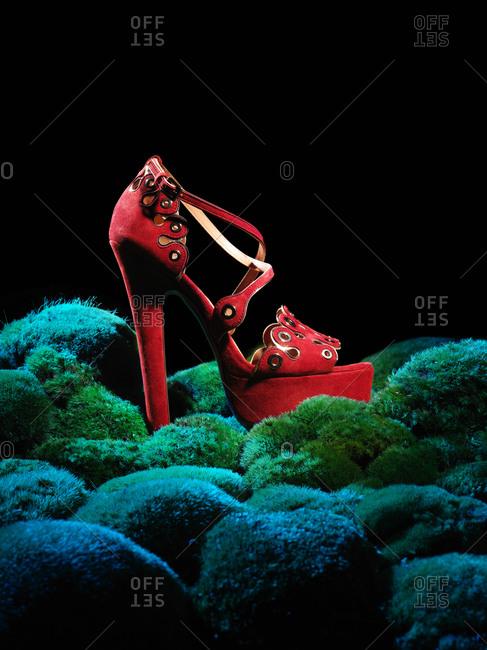 Red high heeled sandal on mossy rocks