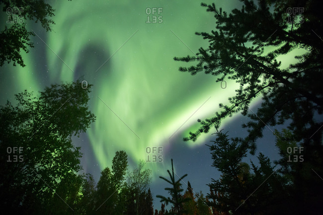 Aurora borealis display over Canadian wilderness