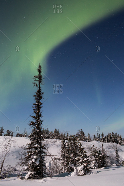 Aurora borealis in Canadian wilderness
