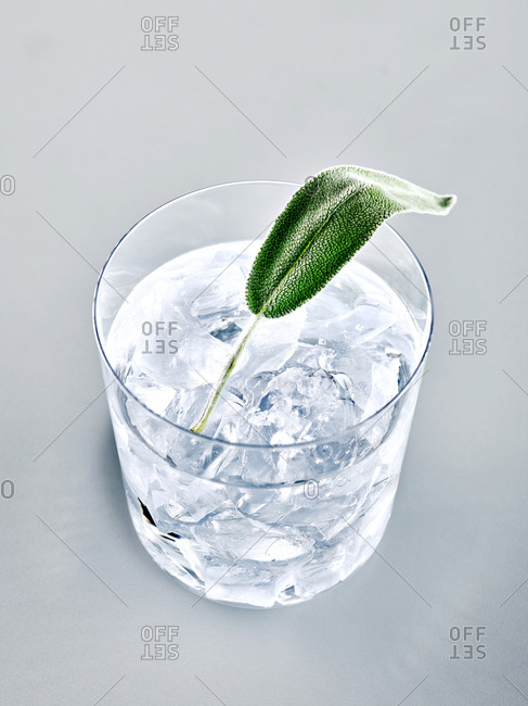 Glass of cocktail garnished with sage