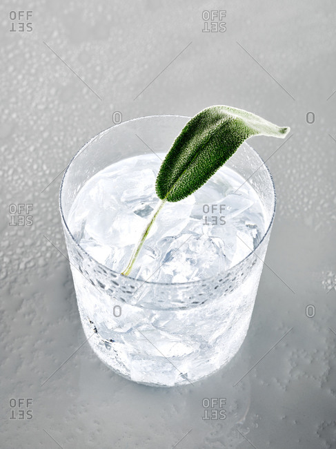 Studio shot of a cocktail with sage